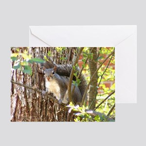Squirrel Among Branches Greeting Card