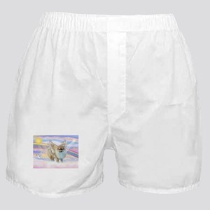 Clouds & Pomeranian Angel Boxer Shorts
