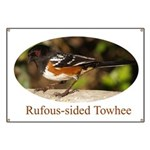 Rufous-sided Towhee Banner