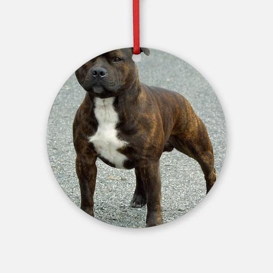 Staffordshire Bull Terrier 9F23-12 Ornament (Round