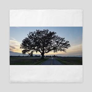 Old Oak Tree Queen Duvet