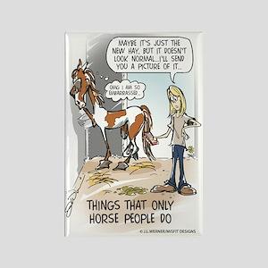 Horse Poop Magnets