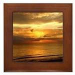 DTC Photography & Posters Framed Tile