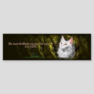 Beautiful mystery cat Bumper Sticker