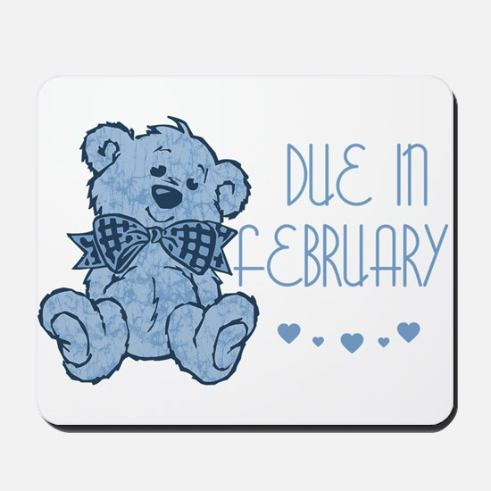 Blue Marbled Teddy Due In February Mousepad