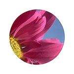 Pink Gerbera Daisy 3.5