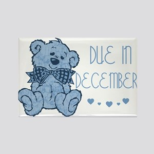 Blue Marbled Teddy Due In December Rectangle Magne