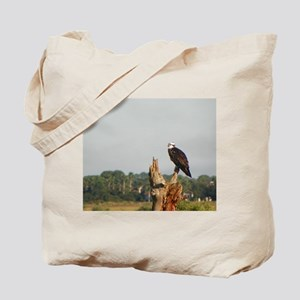 FLORIDA OSPREY Tote Bag