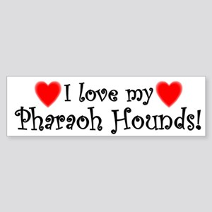 I Love My Pharaoh Hounds Bumper Sticker