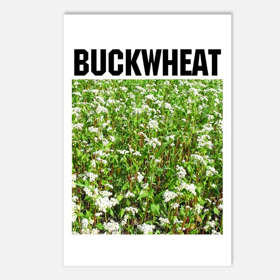 Buckwheat Postcards (Package of 8)