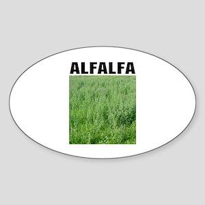 Alfalfa Oval Sticker