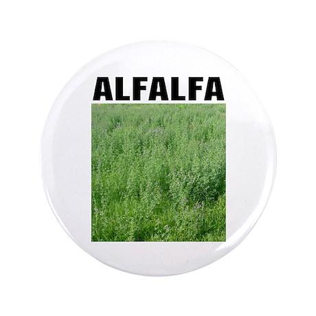 "Alfalfa 3.5"" Button (100 pack)"