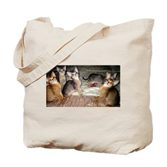 Cute Aby Kittens Tote Bag