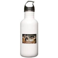 Cute Aby Kittens Water Bottle
