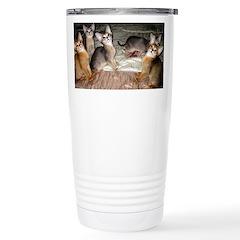 Cute Aby Kittens Mugs