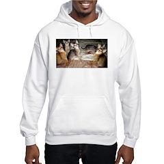 Cute Aby Kittens Sweatshirt