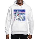 Northern Lights Hooded Sweatshirt