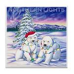 Northern Lights Tile Coaster