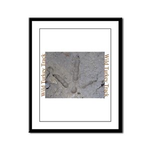 Real Turkey Track Framed Panel Print