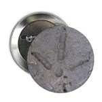 """Real Turkey Track 2.25"""" Button (10 pack)"""