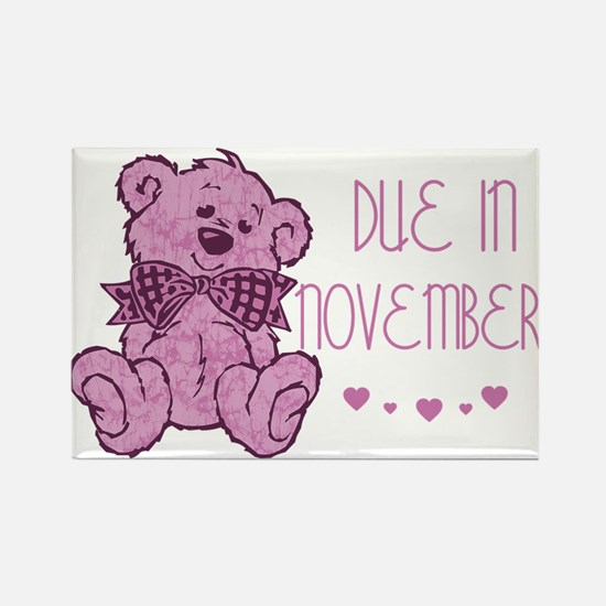 Pink Marble Teddy Due November Rectangle Magnet