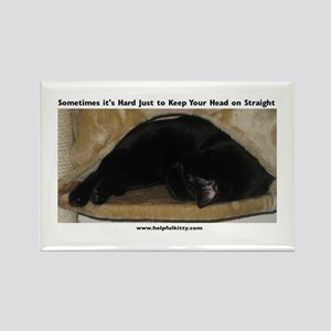 Head on Straight Kitty Rectangle Magnet