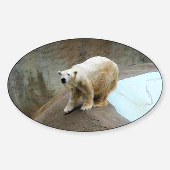 Helaine's Polar Bear Sticker (Oval)