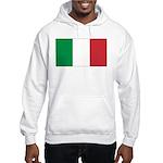 Italian Flag Hooded Sweatshirt