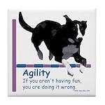 Have Fun in Agility Tile Coaster
