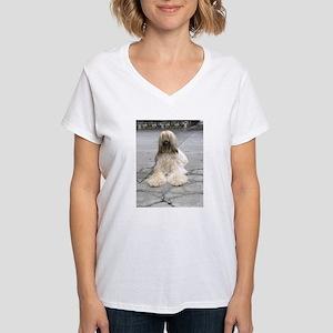 Helaine's Afghan Hound Women's V-Neck T-Shirt
