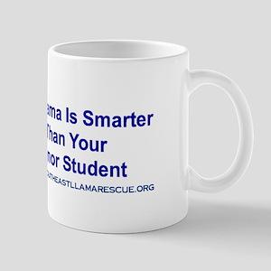 SELR Mug - My Llama is Smarter