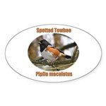 Spotted Towhee Oval Sticker (50 pk)