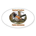 Spotted Towhee Oval Sticker (10 pk)