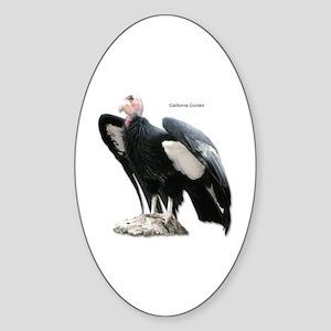 California Condor Oval Sticker