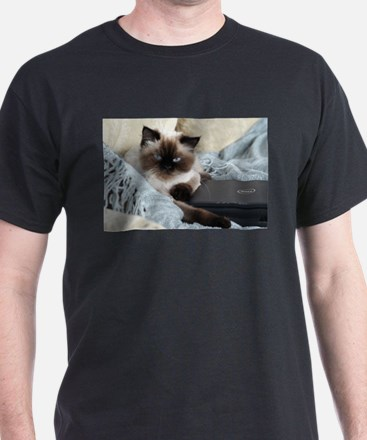 Cats For Romney T-Shirt