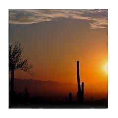 Desert Sunrise Tile Coaster