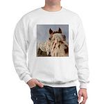 Humorous Equine Sweatshirt