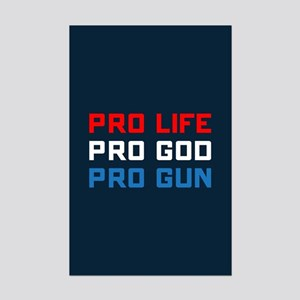 Pro Life, God, Gun Mini Poster Print