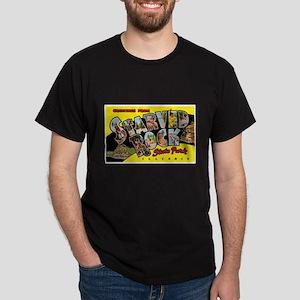 Starved Rock Park Illinois (Front) Dark T-Shirt