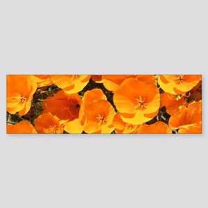 Helaine's California Poppies Bumper Sticker