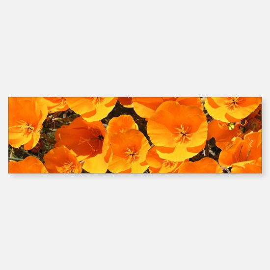 Helaine's California Poppies Bumper Bumper Bumper Sticker