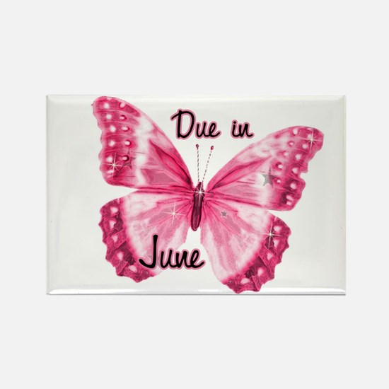 Due June Sparkle Butterfly Rectangle Magnet