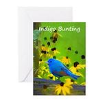 Indigo Bunting Greeting Cards (Pk of 20)
