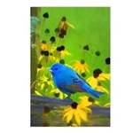 Indigo Bunting Postcards (Package of 8)