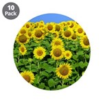 "Sunflower Cluster 3.5"" Button (10 pack)"