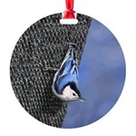 Nuthatch Round Ornament