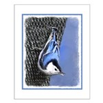 Nuthatch Small Poster