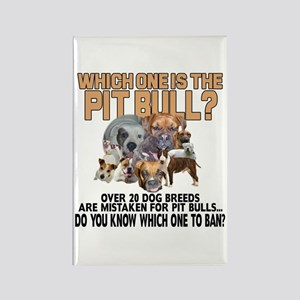 Find the Pit Bull Rectangle Magnet