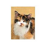 Calico Cat 5'x7'Area Rug