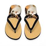 Calico Cat Flip Flops